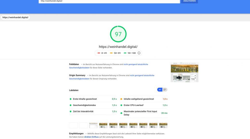 Screenshot Google PageSpeed Insight um Weinhändler bei der Suchmaschinenoptimierung (SEO) zu unterstützen.