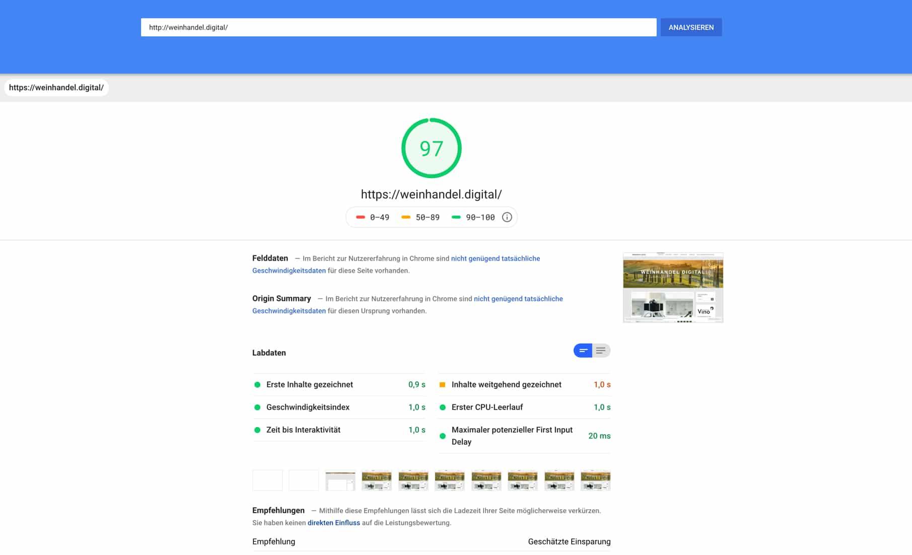 Screenshot Google PageSpeed Insight
