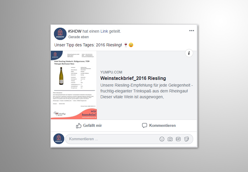 "Screenshot: Facebook-Post_PDF-Datei als ""ePaper"""